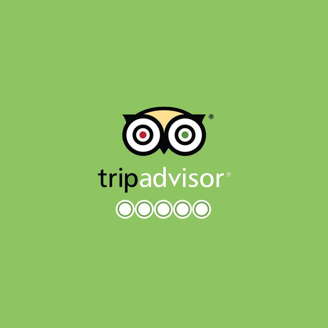 VIPTOURSBA Tripadvisor reviews
