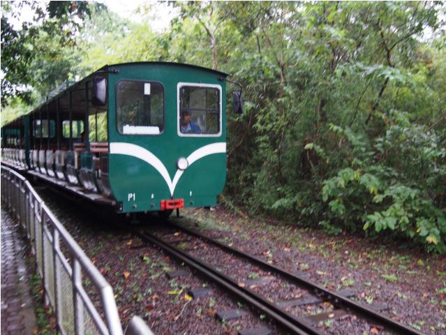 VIP TOURS BA - Iguazu Train